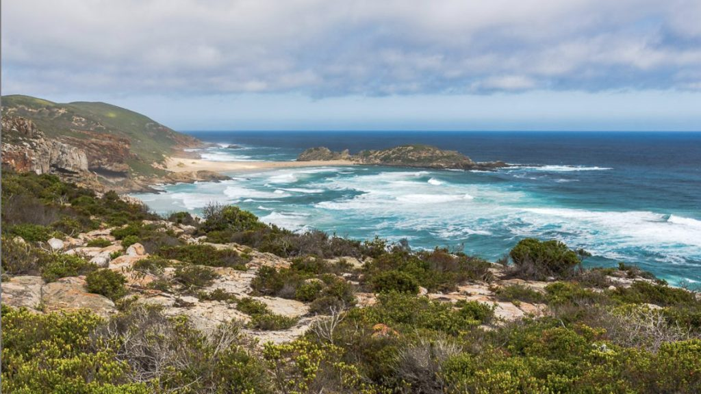 Panorama picture of blue ocean and Robberg Nature reserve in Plettenberg Bay, Western Cape, South Africa